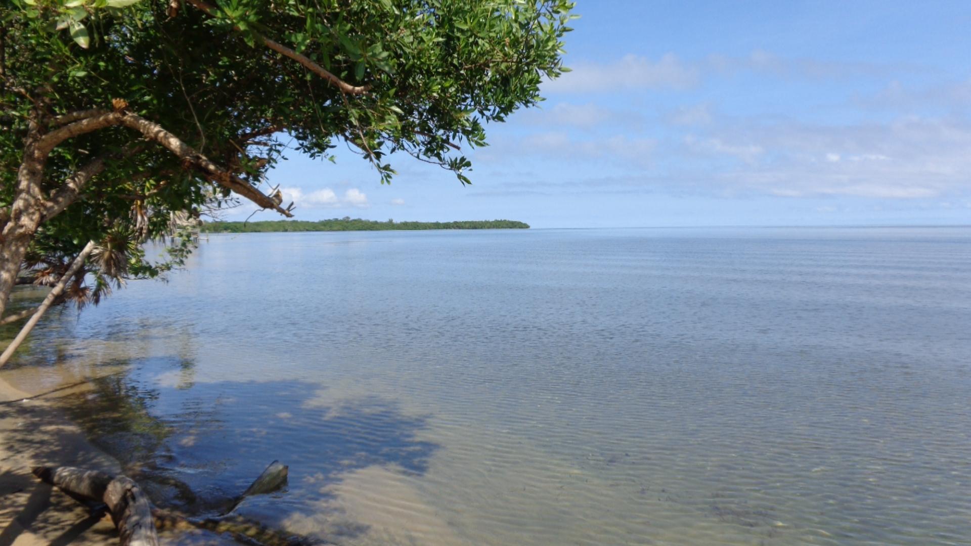 Tropical Island Beach Ambience Sound: Caribbean Vacation Rental